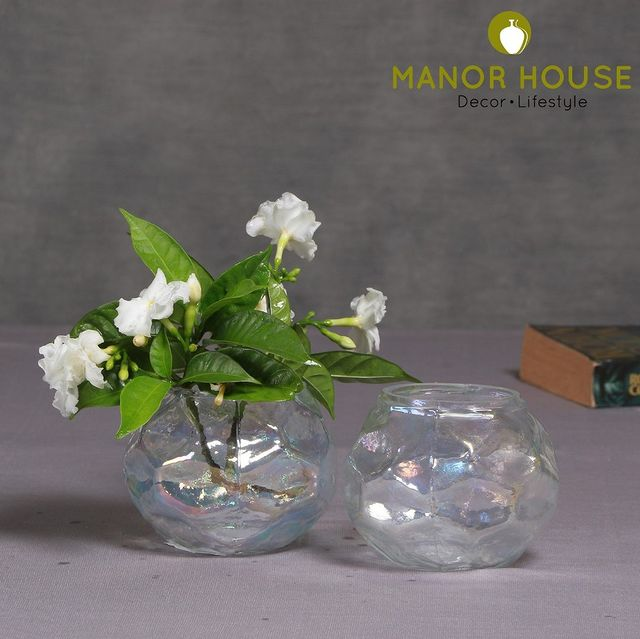 Upgrade to this multipurpose rainbow glass votive, use it as a flower vase, candle holder or pen holder. This masterpiece is perfect for your home and garden decor, you will be surprised at what this rainbow glass brings you! . . . . . #glassware #glassbowl #rainbowglass #rainbowvotives #rainbowvase #serveware #dinnerware #ethnic #ethnictouch #tabledecor #tablesetting #platter #kitchendecor #dining #tablescapeartist #tablesettingideas #tablesettings #dinnersetting #hosting #beautifulhomes #homestore #apartmentdecor #tablescapes #tablescapestyling #tableware #dinnerideas #tablesetup #decor #durable @bloominghomeee @transformation_tales @home_iswhereheartis @raw_all_india #uchomes @urbancompany_homes @pretty_small_spaces @creative_homestyles